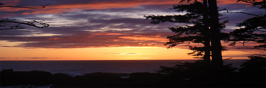 Ucluelet-banner3
