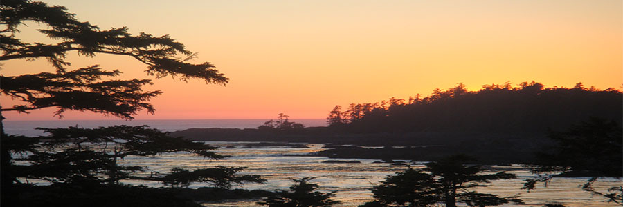 Ucluelet-banner5